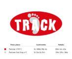 Logotipo Track - colores